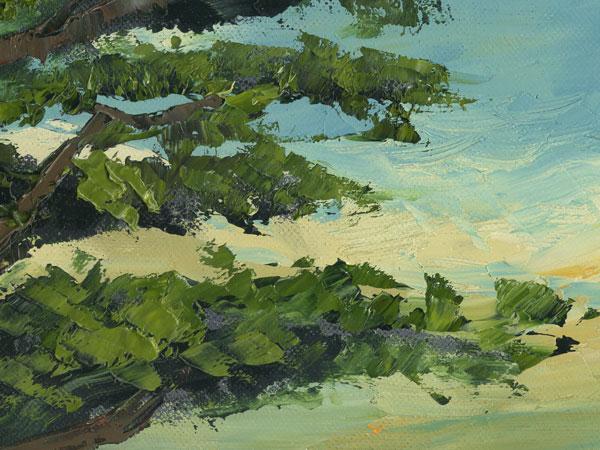 Carmel Monterey Pine Ca