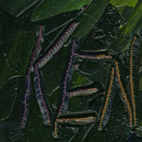 kenneth john oil paintings signature