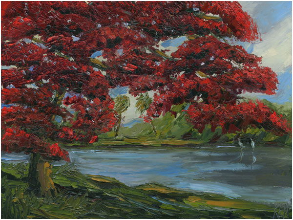 Royal Poinciana Oil Painting